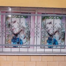 Pencere Korkulukları